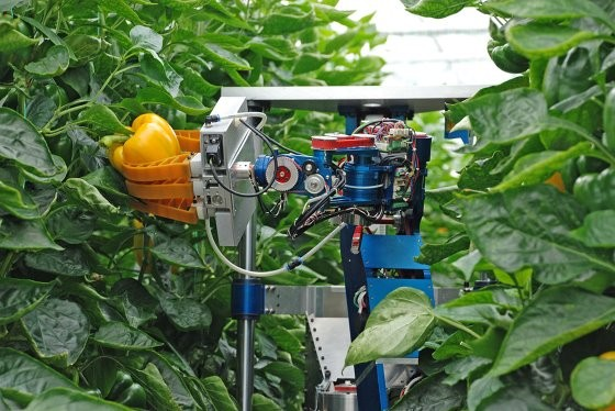 Responsible innovation key to smart farming