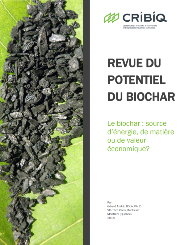Review of the potential of biochar